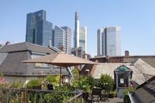 Dachgarten in Frankfurt